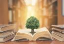 Valores do Ensino Fundamental II